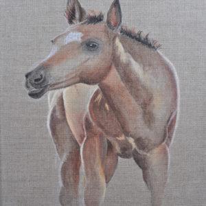 Paard (Tuchlein- lijmverf op linnen 20x30 cm) - 2018