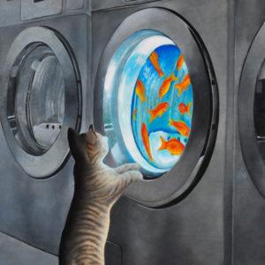 Kat in wasserette (olieverf op doek 40x60 cm) - 2019